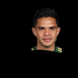 Andrés Flores
