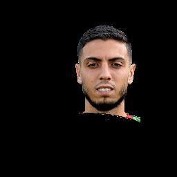 Hicham Faik