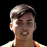 Ronaldo Abarca