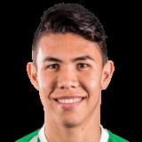 Nicolás Hernández